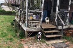 Screened in porch repair